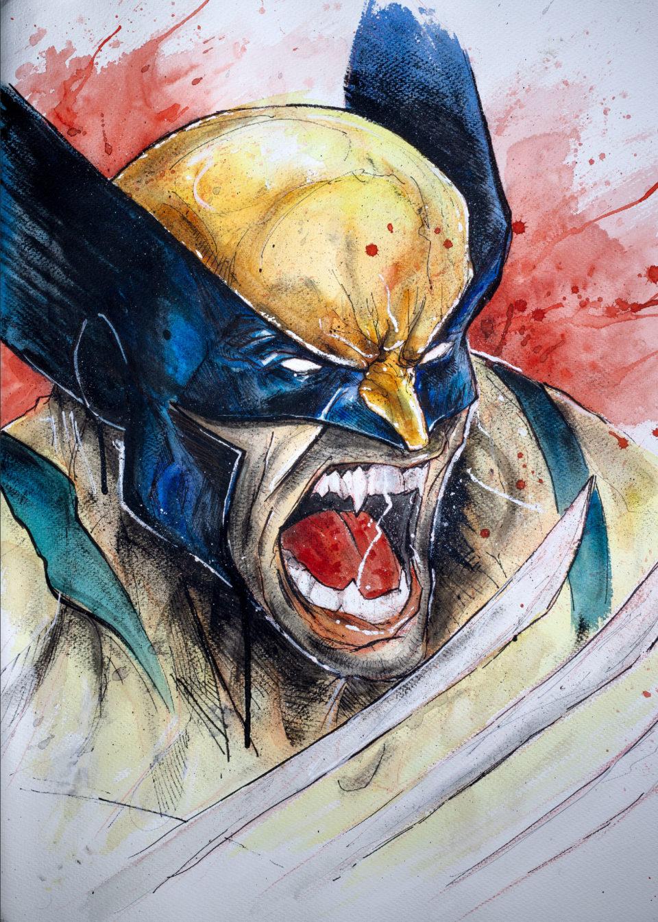 Wolverine - Dessin dans son intégralité